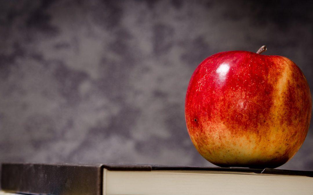 Download: Back to School 2020 Sentiment Report
